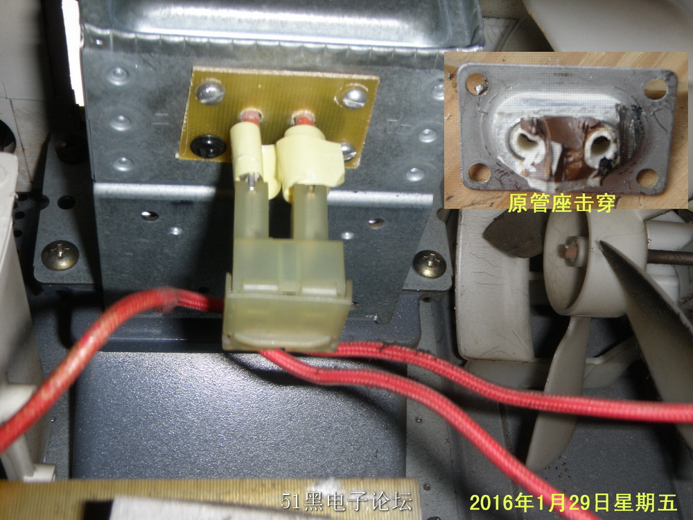 P1290524.JPG